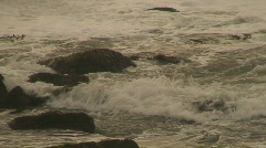 Southern California Beach Series Stock Footage