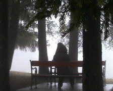 Girl sit and rest on the bench in woods Stock Footage