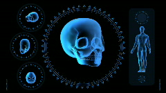 Hi-tech Scan Screen - Skull 04 (HD) Stock Footage