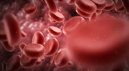 Stock Video Footage of Blood cells.