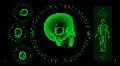 Hi-tech Scan Screen - Skull 06 (HD) Footage