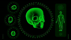 Hi-tech Scan Screen - Skull 06 (HD) Stock Footage
