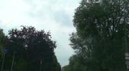 Sky through trees Stock Footage