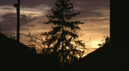 Stock Video Footage of Suburban sunset tree. Timelapse shot.