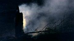 HD Smoking burnt tree, closeup - stock footage