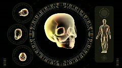 Hi-tech Scan Screen - Skull 07 (HD) Stock Footage
