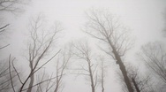 Mountain Fog with cabin Stock Footage