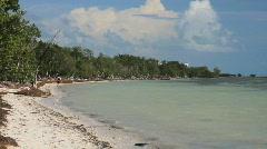 Beach Landscape Stock Footage