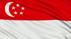 Singapore flag, with real structure of a fabric - stock footage