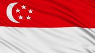 Singapore flag, with real structure of a fabric Stock Footage