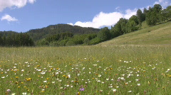 Countryside in Styria - 16 : 9  wide Stock Footage