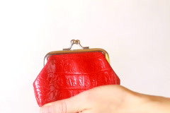 Hand insert coin in the purse Stock Footage