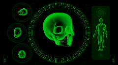 Hi-tech Scan Screen - Skull 09 (HD) Stock Footage