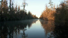 Stock Video Footage of Okefenokee swamp wildlife refuge at sunrise