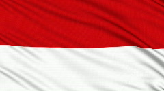 Indonesia Flag, with real structure of a fabric - stock footage