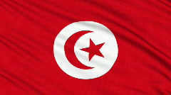 Tunisia flag, with real structure of a fabric Stock Footage