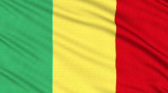 Mali flag, with real structure of a fabric Stock Footage