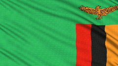 Zambia flag, with real structure of a fabric - stock footage