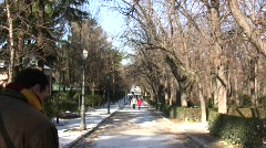 Winter in El Retiro Park (Madrid) Stock Footage