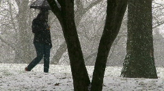 Umbrella Snowfall 1 of 4 Stock Footage
