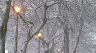 Stock Video Footage of Winter Setting 3