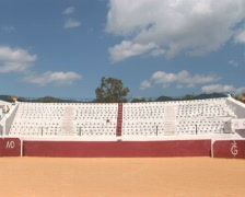 PAL: Bull fighting arena - stock footage