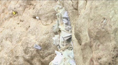 Western Wall - Notes full with prays between the stones Stock Footage