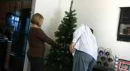 Taking Down Christmas Tree 1352 Stock Footage