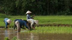 Laos: Etthnic Minority - stock footage