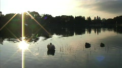 Sun Gleaming off of the water during a sunset with ducks - stock footage