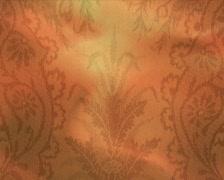 Autumn lace p Stock Footage
