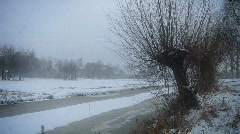 Winterscene: Willows in rural snow landscape Stock Footage