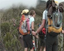 Hikers walk to shira kamp Stock Footage