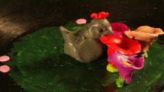 birdy play-do art - stock footage