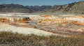 Mammoth Hot Springs Terraces Footage