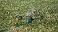 Lawn sprinkler. Stock Footage