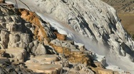 Mammoth Hot Springs Terraces Stock Footage