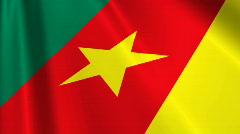 Cameroon Flag Loop 03 Stock Footage