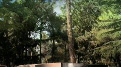 Itzhak Rabin's Grave 2 Stock Footage