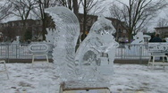 Ice Sculptures  Stock Footage