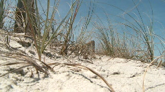 beach2 - stock footage