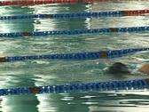 Stock Video Footage of Swimming II
