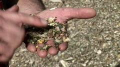 Farmer With Corn Stock Footage