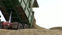 Harvested Corn In Silo - stock footage