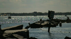 Boats in the Bay - stock footage