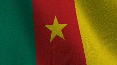 Flag of Cameroon - seamless loop Stock Footage