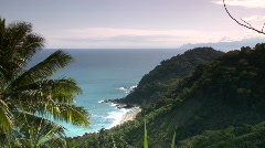 View of rocky cliff with forest on the flank with palm leaf foreground - stock footage