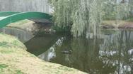 Misty Lake Wtith Ducks & Bridg Stock Footage