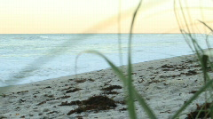 Waves on Shore Stock Footage