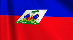 Haiti Flag Loop 03 Stock Footage